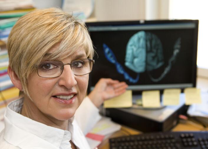 Tone Tønjum forklarer hvordan forskerne sammenligner den friske og den syke hjernen. (Foto: Johnny Syversen)