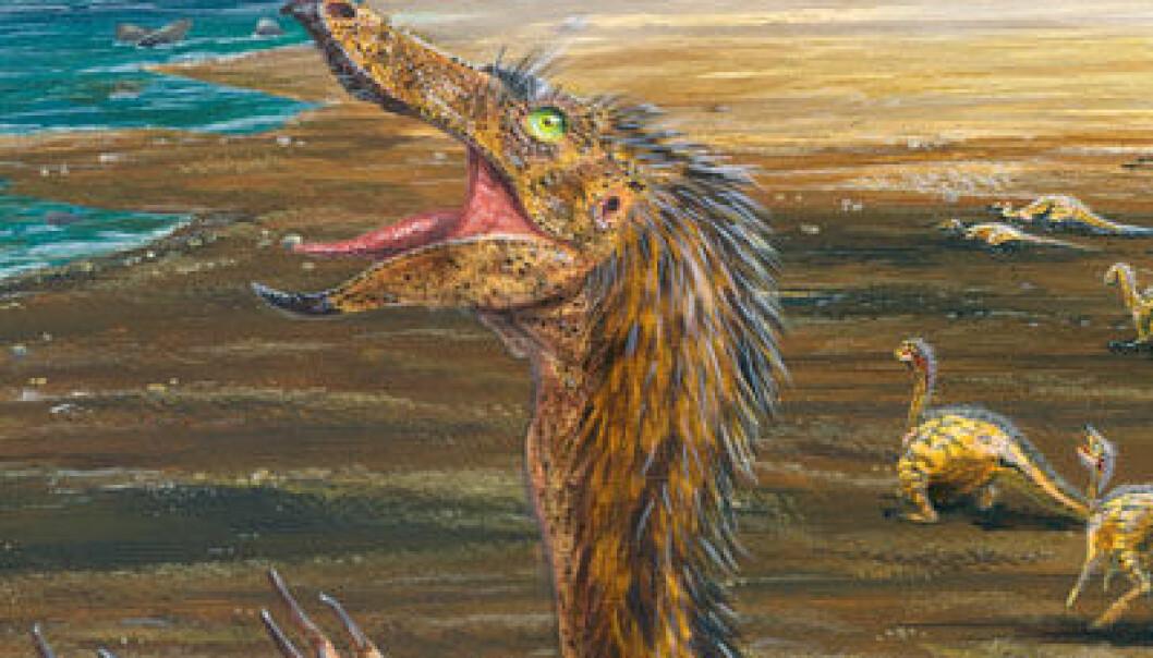 Da de nærmet seg elva i det som i dag er en del av Gobi-ørkenen, Mongolia, var flokken av unge dinosaurer (Sinornithomimus) brått fanget i gjørma. (Kunstnerisk framstilling ved Todd Marshall/Project Exploration)