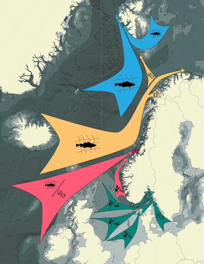 Figuren viser hvor det meste av plasten kommer fra og hvilken type det kommer mest av på de ulike strendene. I nord er det mest plast fra fiskeriene, mens i sør er det er mer av vanlige forbruksartikler.