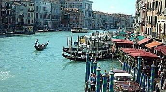 Kunstige celler kan redde Venezia