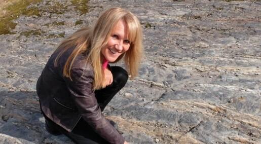 Lynkurs i geologi: Stripete stein, prikkete stein og lag-på-lag-stein