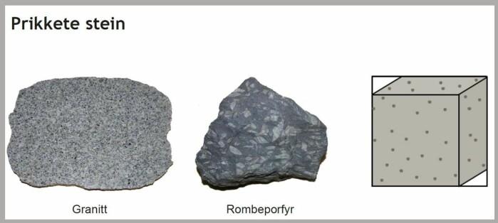 """Prikkete stein<span class="""" font-weight-bold"""" data-lab-font_weight_desktop=""""font-weight-bold""""> </span>er det som på fagspråket kalles <span class="""" italic"""" data-lab-italic_desktop=""""italic"""">magmatiske bergarter</span>. De består av lava som har størknet og blitt kornete – eller prikkete."""