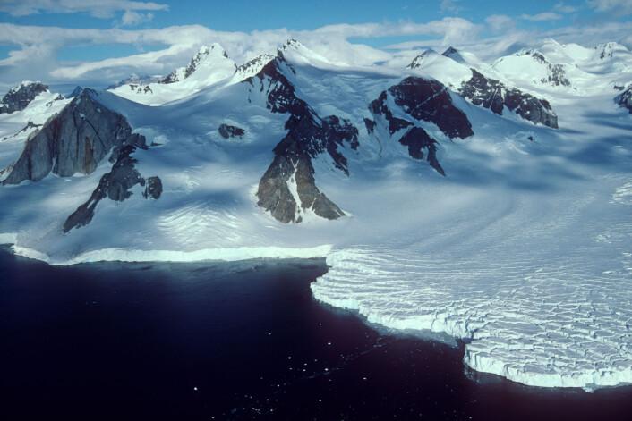 """""""(Foto: British Antarctic Survey)"""""""