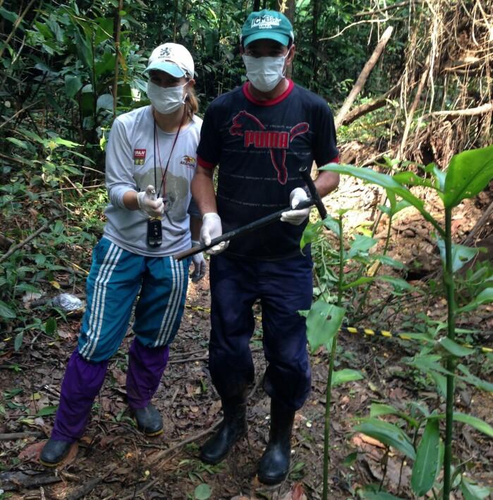 Yennie Bredin har også undersøkt jordprøver av skogbunn i Amazonas.
