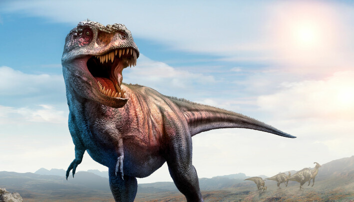 Jammen godt vi ikke møter på Tyrannosaurus rex på tur i skog og mark!