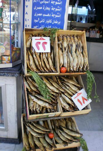 Hel røkt sild er det vanligste produktet, men det selges også filet- og rognprodukter i Egypt