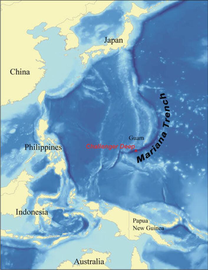 """""""Challengerdypet er verdens største kjente havdyp på nesten 11 000 meter. Marianergropen ligger rett syd for Guam i Stillehavet. (Illustrasjon: Karl Musser,på bakgrunn avdata fraNOAA)"""""""