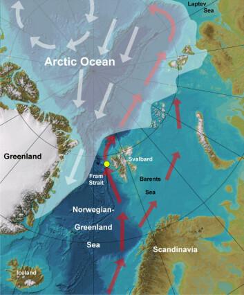 79° nord: Den gule sirkelen markerer hvor sedimentprøvene er hentet fra. (Kart: Robert Spielhagen)