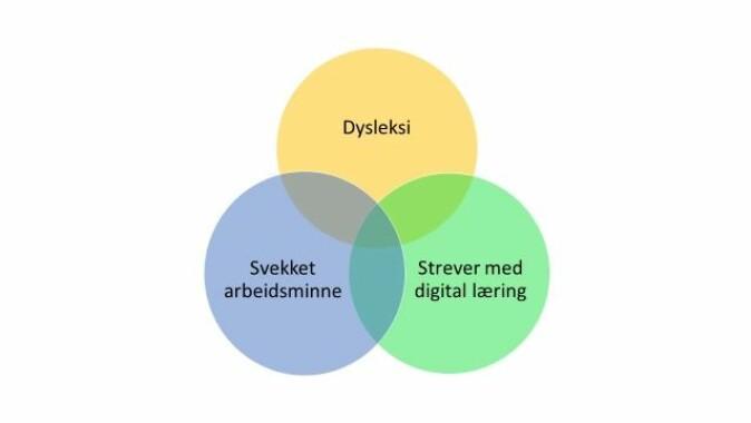 3-7 prosent har så alvorlige lese- og skrivevansker at det kalles dysleksi. Av disse har mange svekket arbeidsminne og mange strever med læring på digitale plattformer.