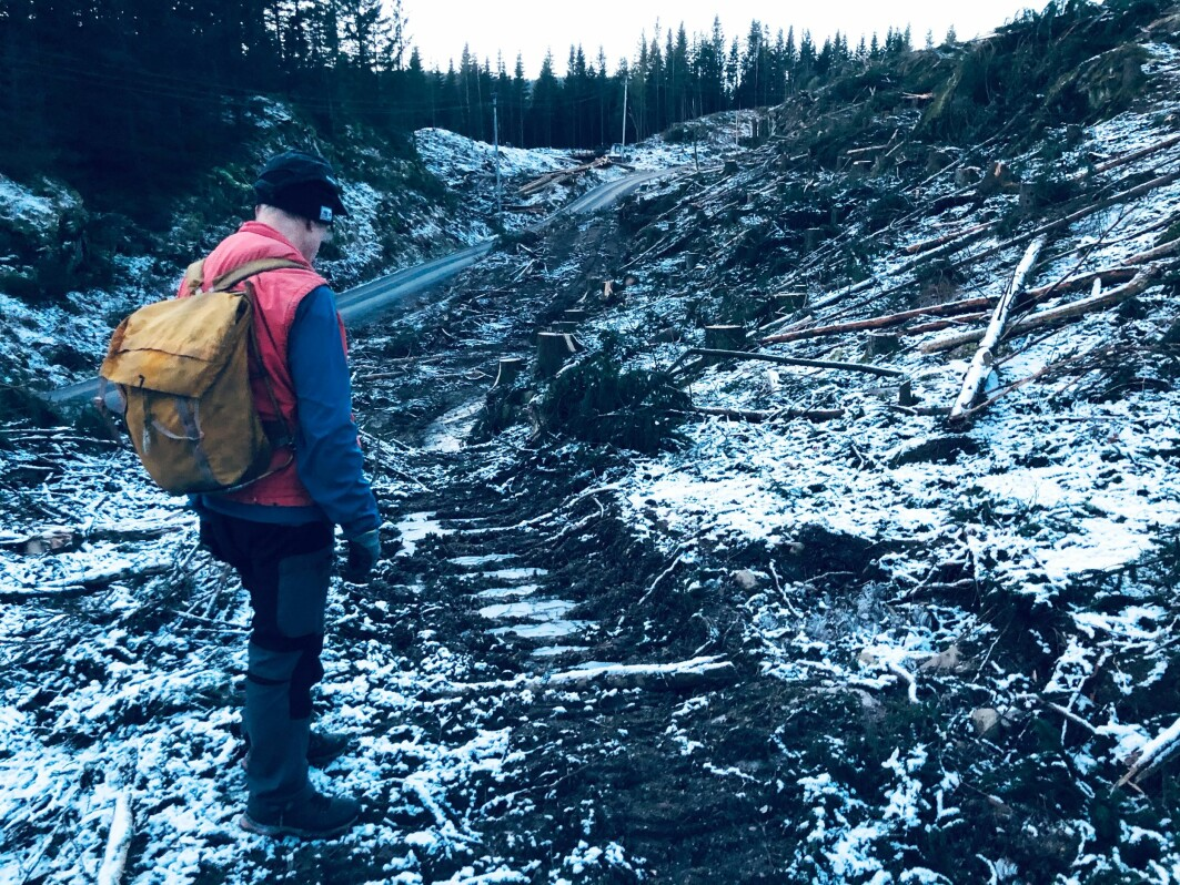 Da det mørkner og vi nærmer oss Movatn stasjon i Nordmarka, går Dragonveien inn i et område der skogsmaskiner helt nylig har gått hardt fram. Kanskje er sporene etter den gamle veien fra mange hundreår tilbake borte for alltid. Her er de pålagt å rydde opp, mener Ståle Pinslie.
