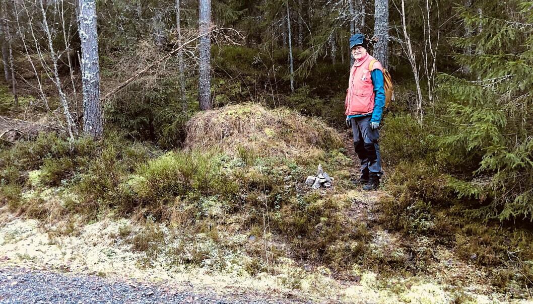 Med små varder som dette gir Ståle og vennene hans deg et hint om hvor stien går inn i skogen.