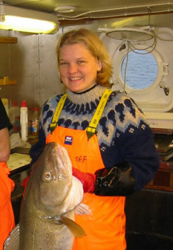 """""""Marinbiolog Tuula Sarvas ved Norges fiskerihøgskole, Universitetet i Tromsø, har studert genetiske forskjeller mellom kysttorsk og skrei."""""""