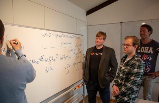Understanding mathematical motives