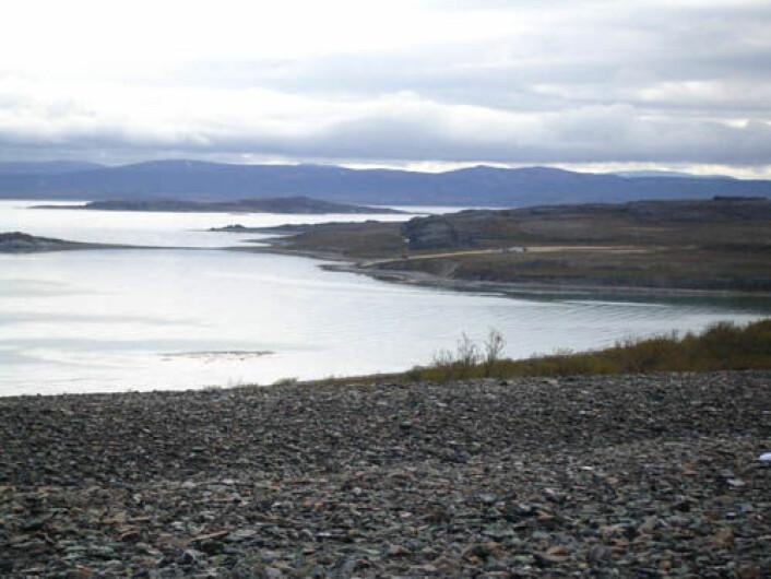 De store fjordsystemene i Finnmark og Troms er et kulturlandskap som har vært i bruk i årtusener. Dette er kjerneområdene for sjøsamisk kultur. Bildet viser Porsangerfjorden sett fra Veines/Riinjárga. (Foto: Camilla Brattland)