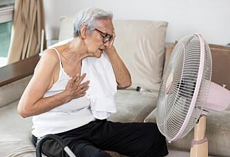 Why do people die during heatwaves?