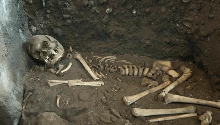 Vistegutten levde for 8200 år siden. Levningene hans stilles ut «i stille og verdige omgivelser».
