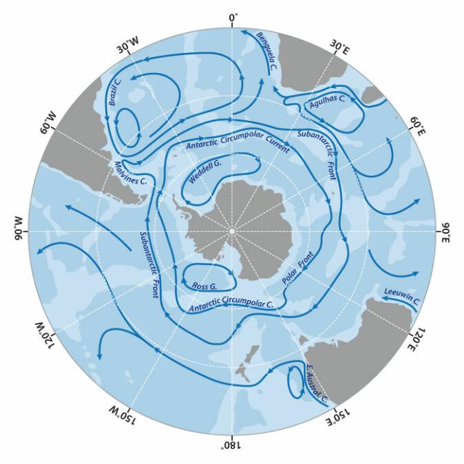 En gigantisk havstrøm som kalles den «Antarktiske sirkumpolare strøm» går hele veien rundt Antarktis og sørger blant annet for at CO2 bindes i havbunnen.