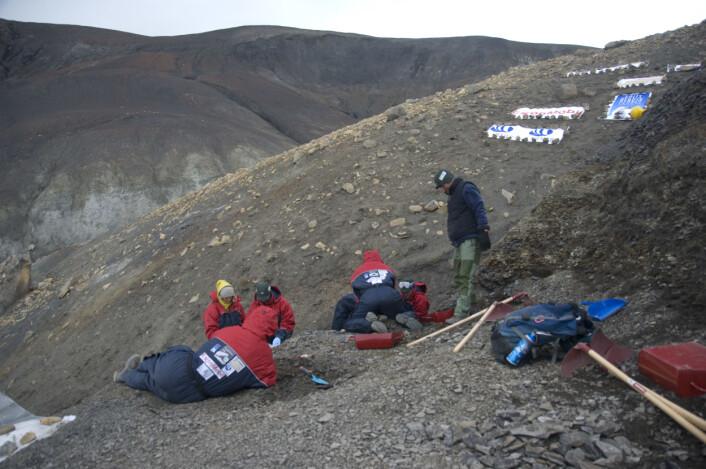 """""""Ikke alle paleontologer graver opp fossiler og knokler på Svalbard. (Foto: Naturhistorisk museum/Universitetet i Oslo)"""""""