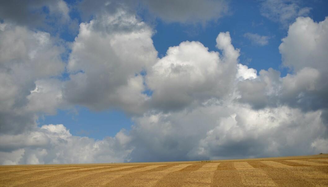 I hvor stor grad skyene vil forsterke den globale oppvarmingen, er blant spørsmålene som vil bli vurdert i et av de viktigste kapitlene i den neste hovedrapporten til FNs klimapanel.