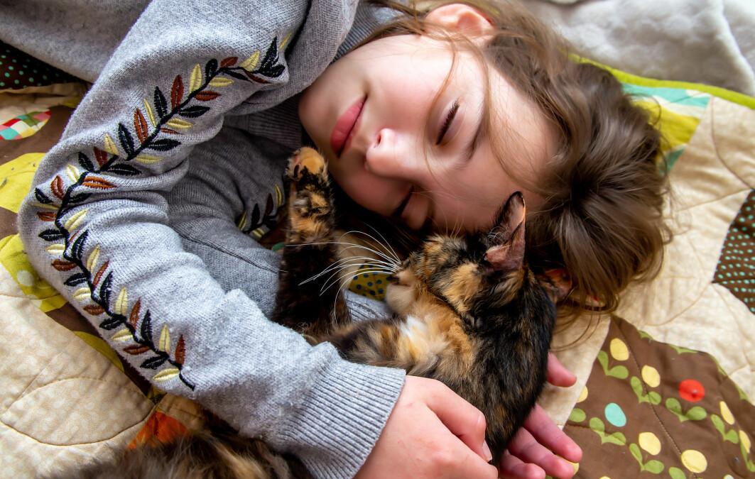 Det er veldig kos å sove sammen med katten. Men det er kanksje ikke så lurt å gjøre det når du er syk.
