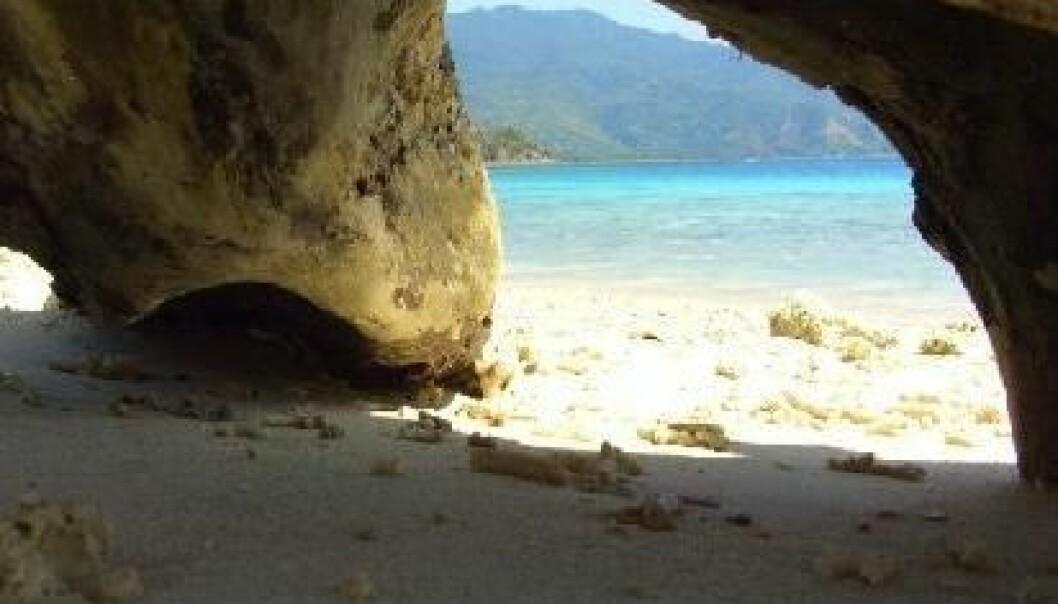 Hobbit-øy befolket tidligere enn antatt