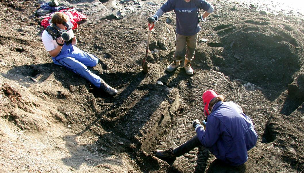 """""""Størrelsen på fossilet har overrasket forskerne, som her er i full gang med feltarbeidet, som varte fra 12. til 14. september 2006. Mer arbeid gjenstår på funnstedet før det vil være aktuelt å frakte fossilet til Longyearbyen."""""""