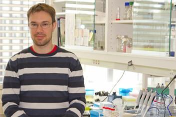 Stipendiat Fabian Grammes har funnet at fettsyren TTA har en svært lovende effekt på hjertefunksjonen til laks. (Foto: Kjell Merok)