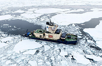 What kind of sea ice is that? Ask Knut!