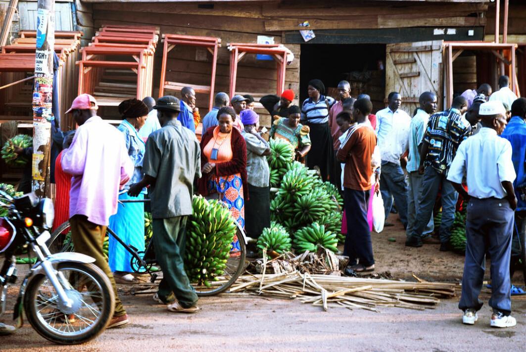 I Uganda har mennesker med funksjonsnedsettelser ekstra tøffe kår og lever ofte i fattigdom, viser en ny studie.