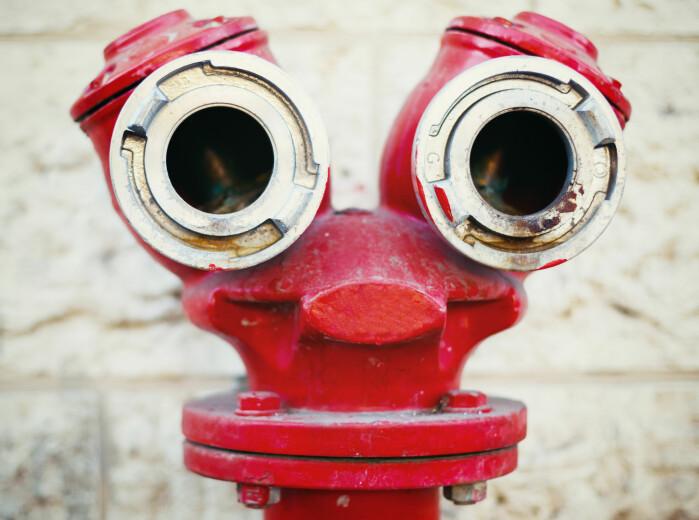 En sjarmerende luring, men i virkeligheten er det en gammeldags brannhydrant.