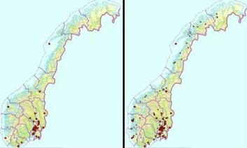 Til venstre: Artsdatabanken august 2010: 106 funn. Til høyre: Artsdatabanken mars 2011: 650 funn.