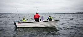 Får fiskere av sjøkreps i seg for mye kvikksølv?