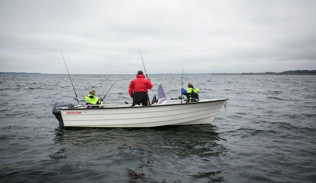 Fritidsfiskere er potensielt en ekstra utsatt gruppe for kvikksølv siden de fisker og spiser en del sjømat.
