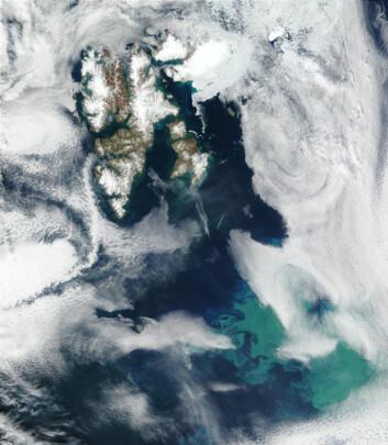 """""""Satellittbilde av Svalbard med algeoppblomstring i Barentshavet. Bildet ble tatt av NASA i 2002."""""""