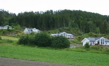 Hyttefelt i Frosta. (Foto: Oddveig Storstad)