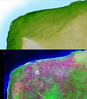 """""""Chicxulub-krateret i Mexico. Noen mener meteoritten som styrtet her, var skyld i dinosaurenes endelige død. (Foto: Wikimedia Commons)"""""""