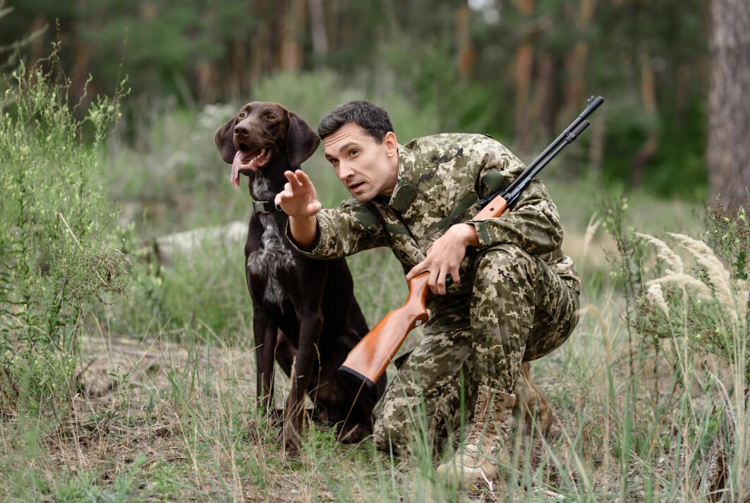 Skal man jakte sammen, er det en fordel å skjønne hverandre. Mannen peker, og hunden forstår hva han mener.