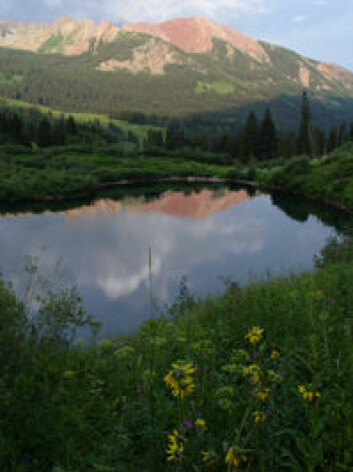 Ferskvann i Colorado, USA, inngår i studien. (Foto: Science/AAAS)