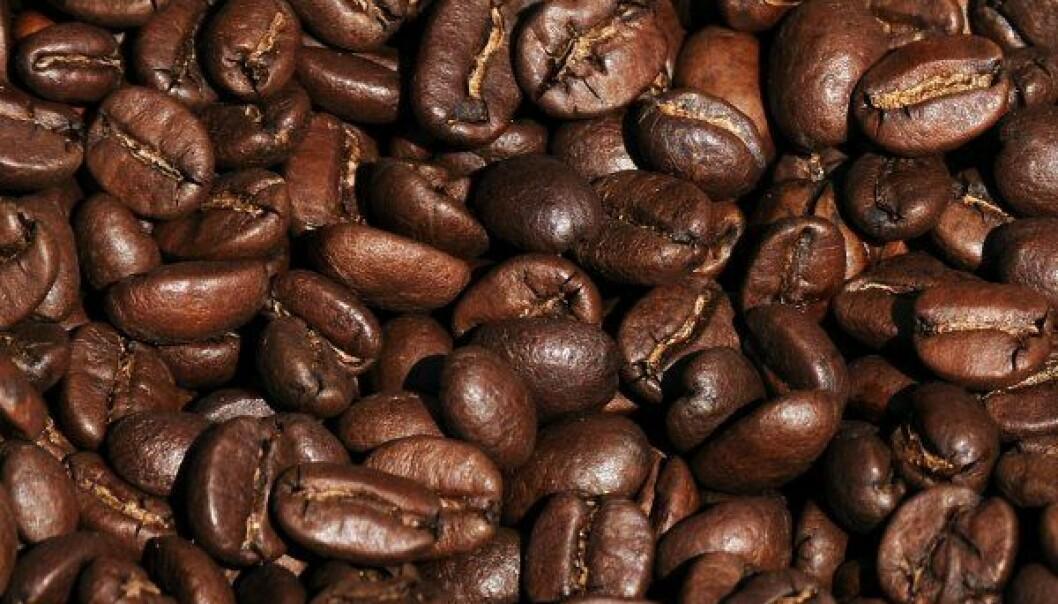 Kunstig nese for kaffe