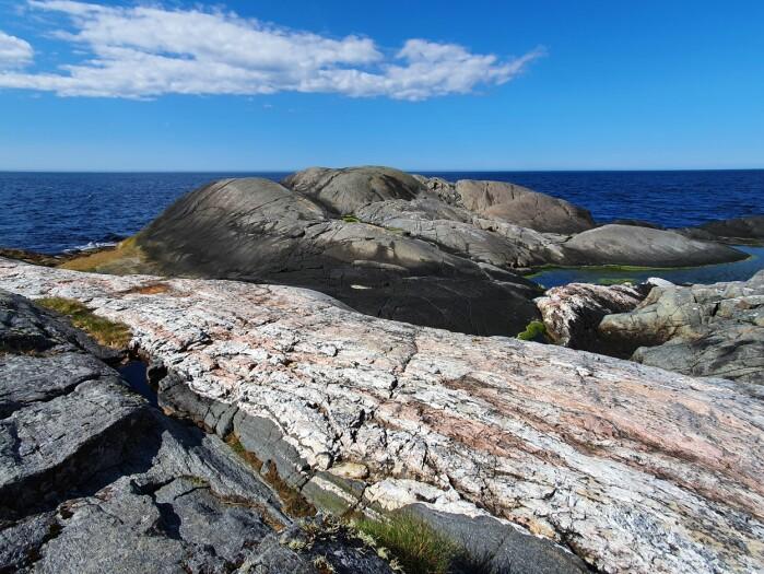 Noen ganger er geologien påfallende – ytterst mot havet i Kristiansunds Folkepark kutter en stor lyserosa åre tvers gjennom de mørke svabergene.