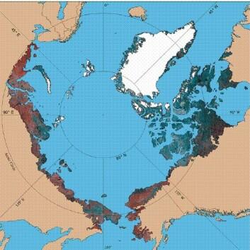 """""""På den smale stripen av land som utgjør arktisk tundra finnes mange unike arter, som kan forsvinne på grunn av raske klimaendringer."""""""