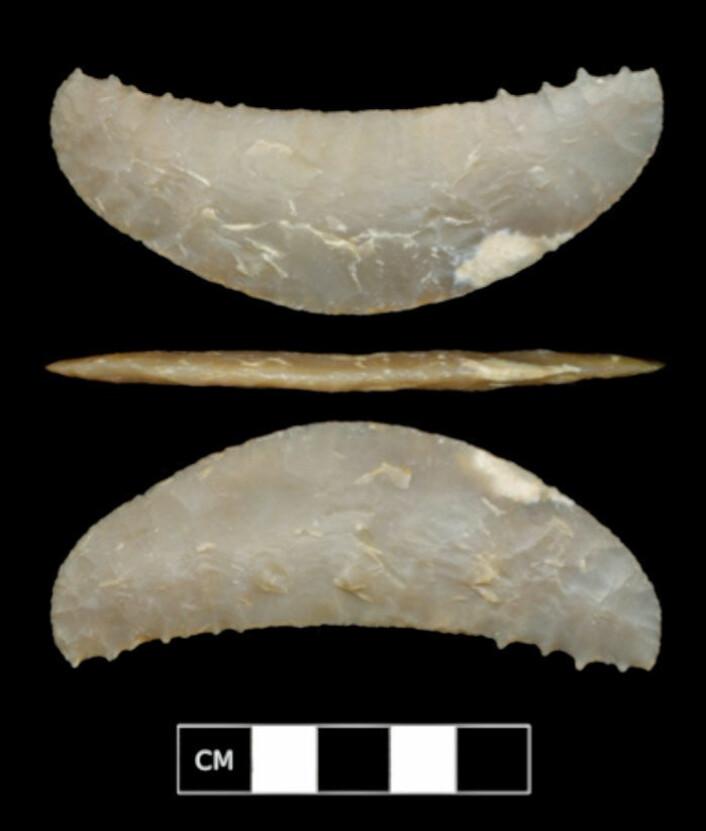 Nærbilde av en av de mystiske halvmåneformede steingjenstandene som forskerne ikke helt vet funksjonen til. De kan ha vært brukt som våpen til fuglejakt. (Foto: University of Oregon)