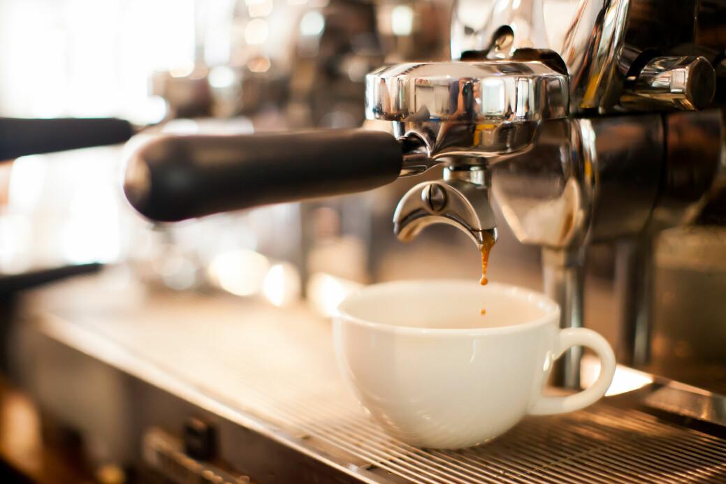 En god kopp kaffe er ikke bare teknikk for brenning, maling og brygging. Den er jo også et jordbruksprodukt.
