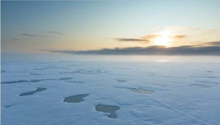 Smeltedammer på havis