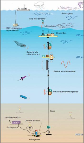Slik kan et havobservatorium forankret på havbunnen se ut. Ulike vitenskapelige måleinstrumenter kan gi observasjoner time for time, året rundt. Klikk forstørrelsesglass for større versjon. (Illustrasjon: Norwegian Ocean Observatory Network/NOON).