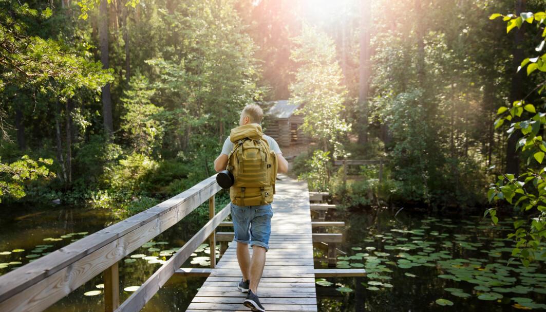 Vi vet at fysisk aktivitet er bra for hjernen. Nå tyder en studie på at det å bevege se utendørs har en egen effekt.