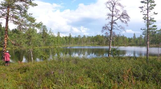 Planter fortsatte å spre seg mot nord tusener av år etter klimaendringen på slutten av istiden