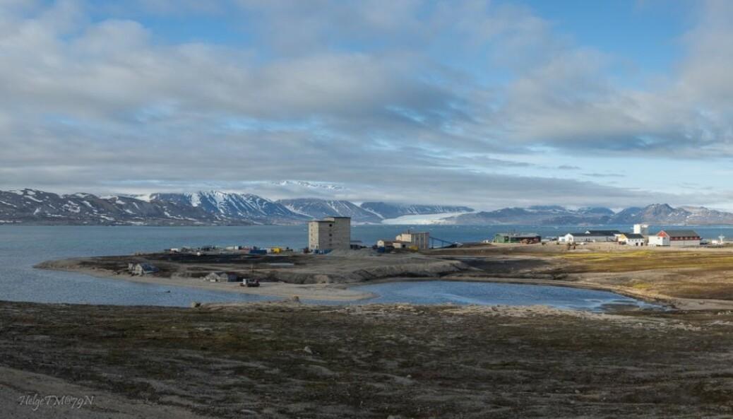 NY-ÅLESUND. Kongsfjorden ved Ny-Ålesund (bebyggelsen) er et populært forskningslaboratorium for forskere fra inn- og utland. Fjorden har en blanding av arktisk og atlantisk vann og ferskvann, i tillegg til sedimenter som renner ut under isbreene, samtidig som klimaet er blitt betydelig varmere på relativt kort tid. Alle disse faktorene gjør økosystemet i fjorden er spesielt interessant for forskere.