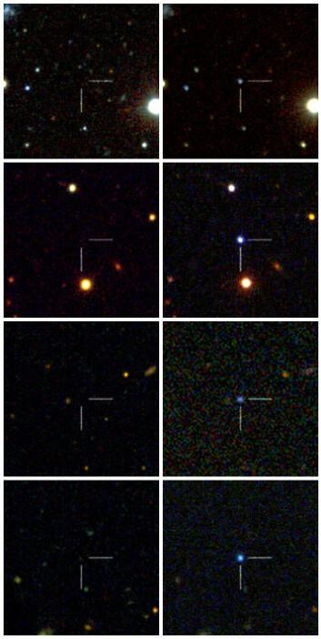 Fire av supernovaene, før og etter eksplosjonene. (Foto: Caltech/Robert Quimby/Nature)