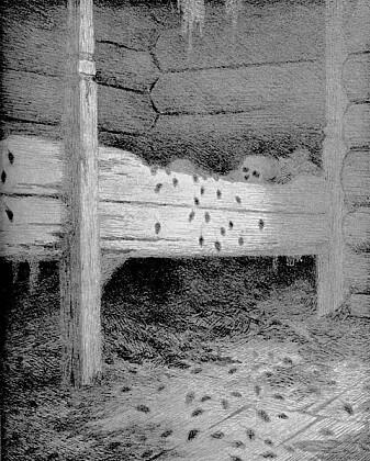 Den norske kunstneren Theodor Kittelsen (1857-1914) har lagd mange tegninger og malerier der han forestiller seg tiden under svartedauden.